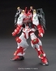 Gundam Build Fighters - Garage Kit - HG Sengoku Astray Gundam
